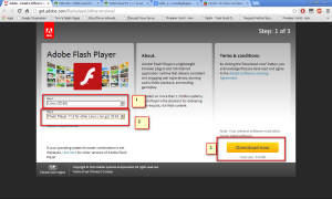 adobeflash player